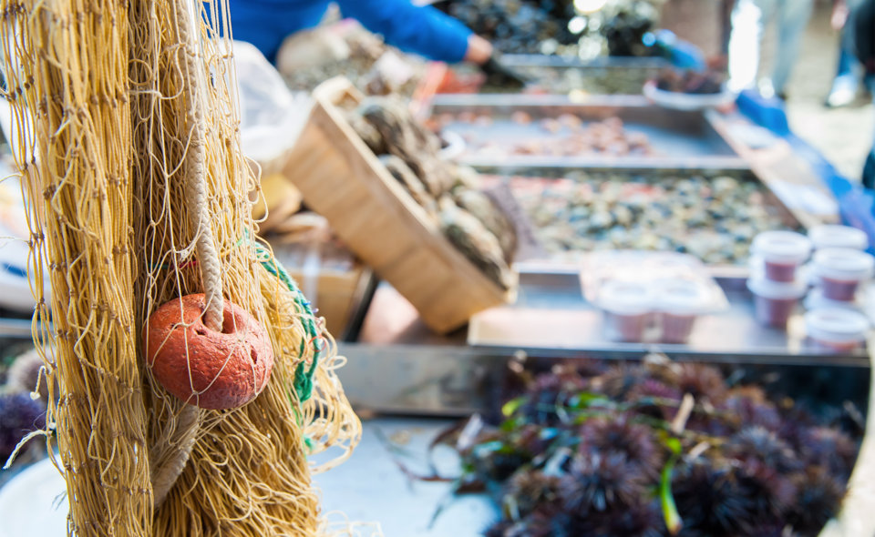 Fresh Fish in Sciacca