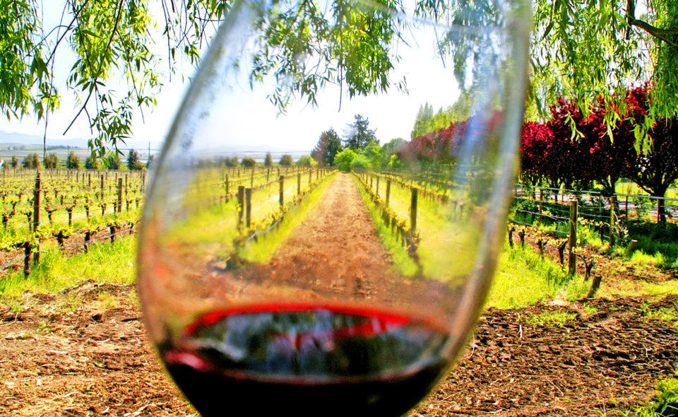 Wine in Menfi