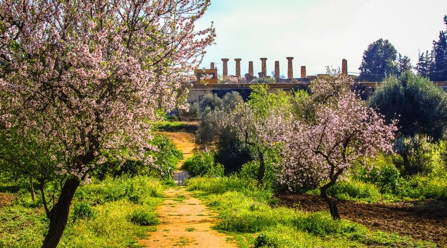 Kolymbetra Garden